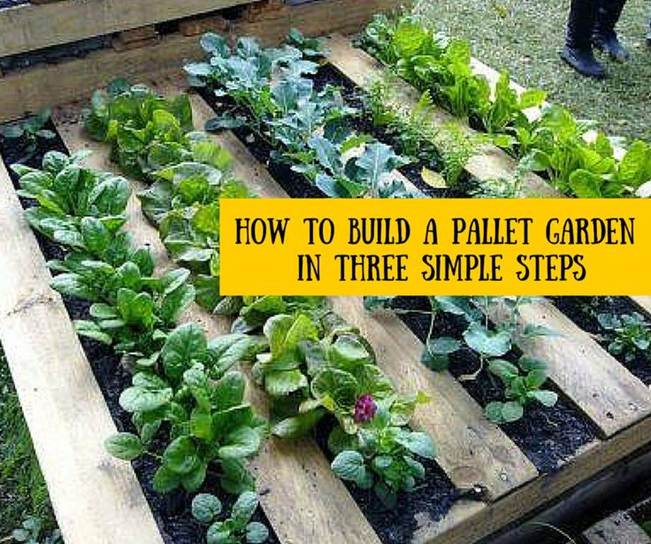 Easy Vegetable Gardening With Pallets 7