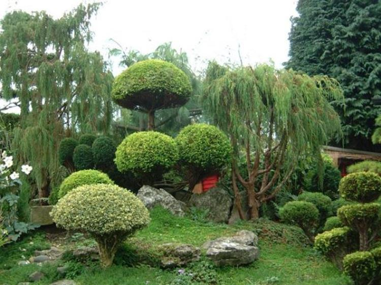 Japanese Style Garden Design Ideas 3