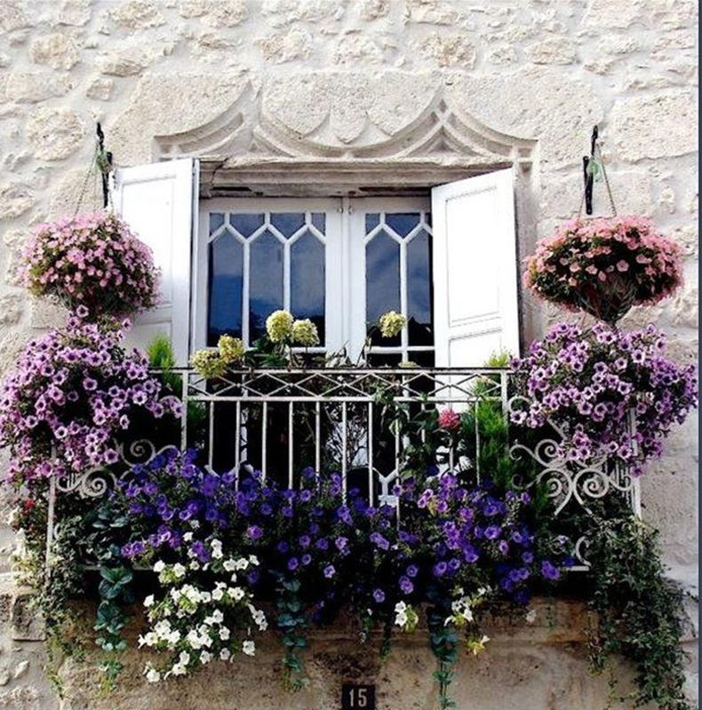Best Beautiful Cascading Flowers For Window Boxes Ideas 27