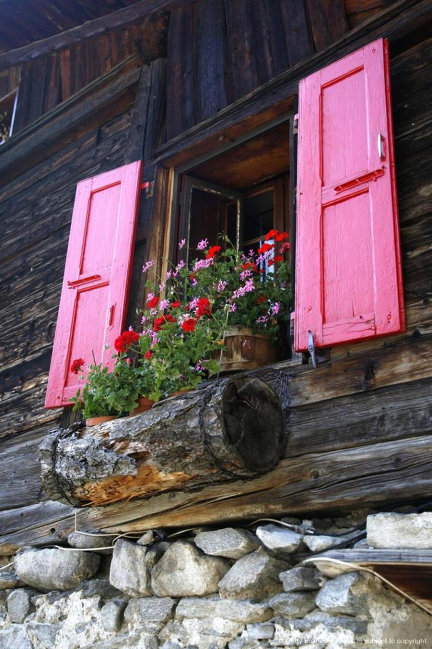 Best Beautiful Cascading Flowers For Window Boxes Ideas 33