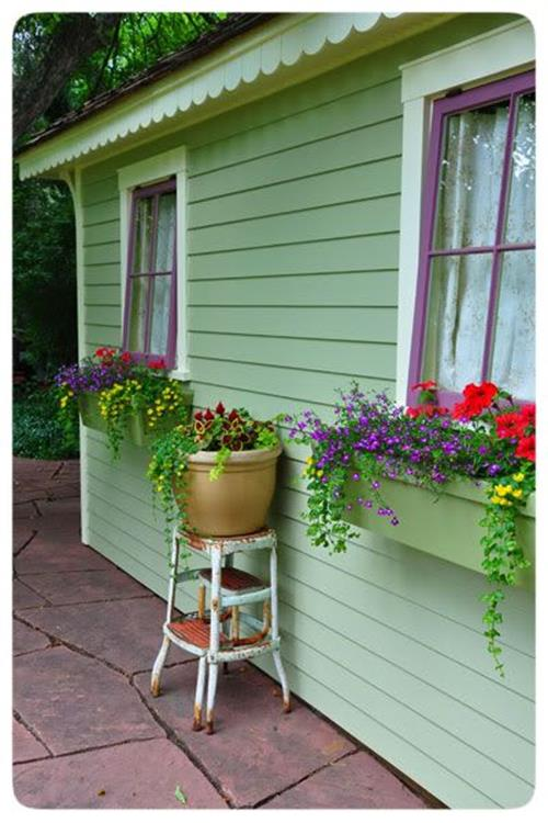 Best Beautiful Cascading Flowers For Window Boxes Ideas 5