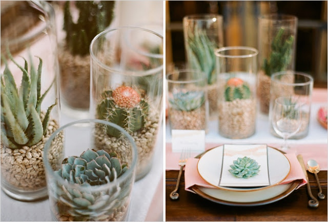 43 Beautiful Cactus Centerpiece Ideas 11 De Lovely Affair Diy Ideas Mini Succulents Eco Friendly Bud Wedding Decor 2