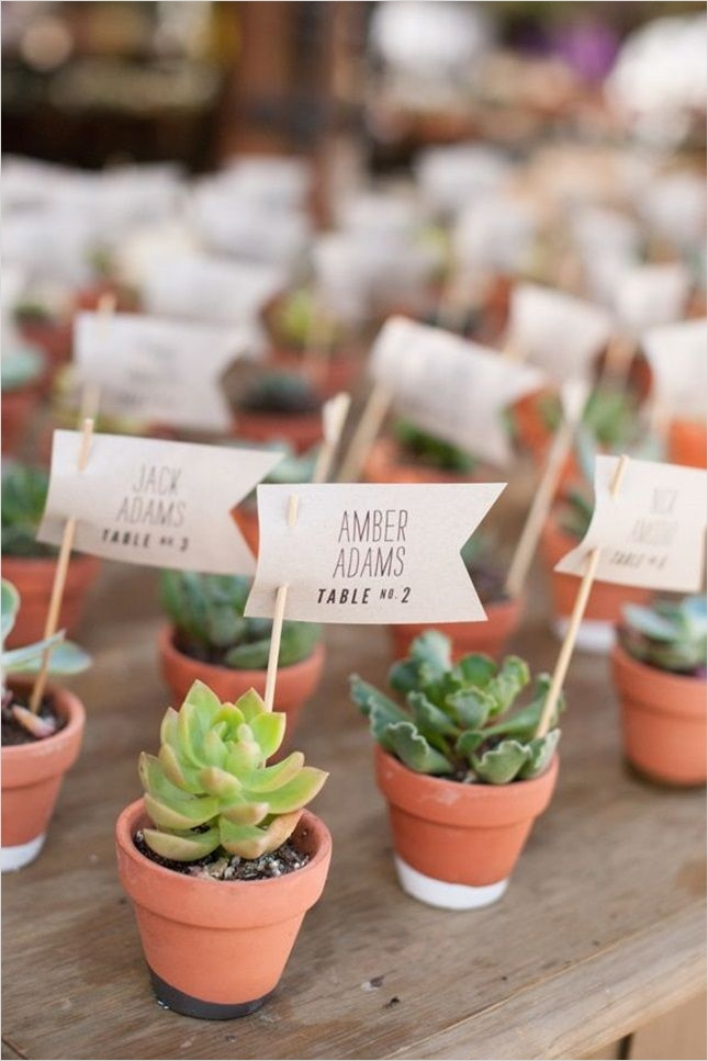 43 Beautiful Cactus Centerpiece Ideas 48 25 Best Ideas About Succulent Wedding Centerpieces On Pinterest 5