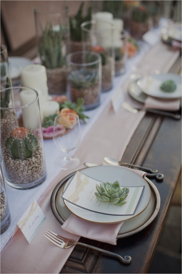 43 Beautiful Cactus Centerpiece Ideas 34 Picture Cacti and Succulent Wedding Decor Ideas 9