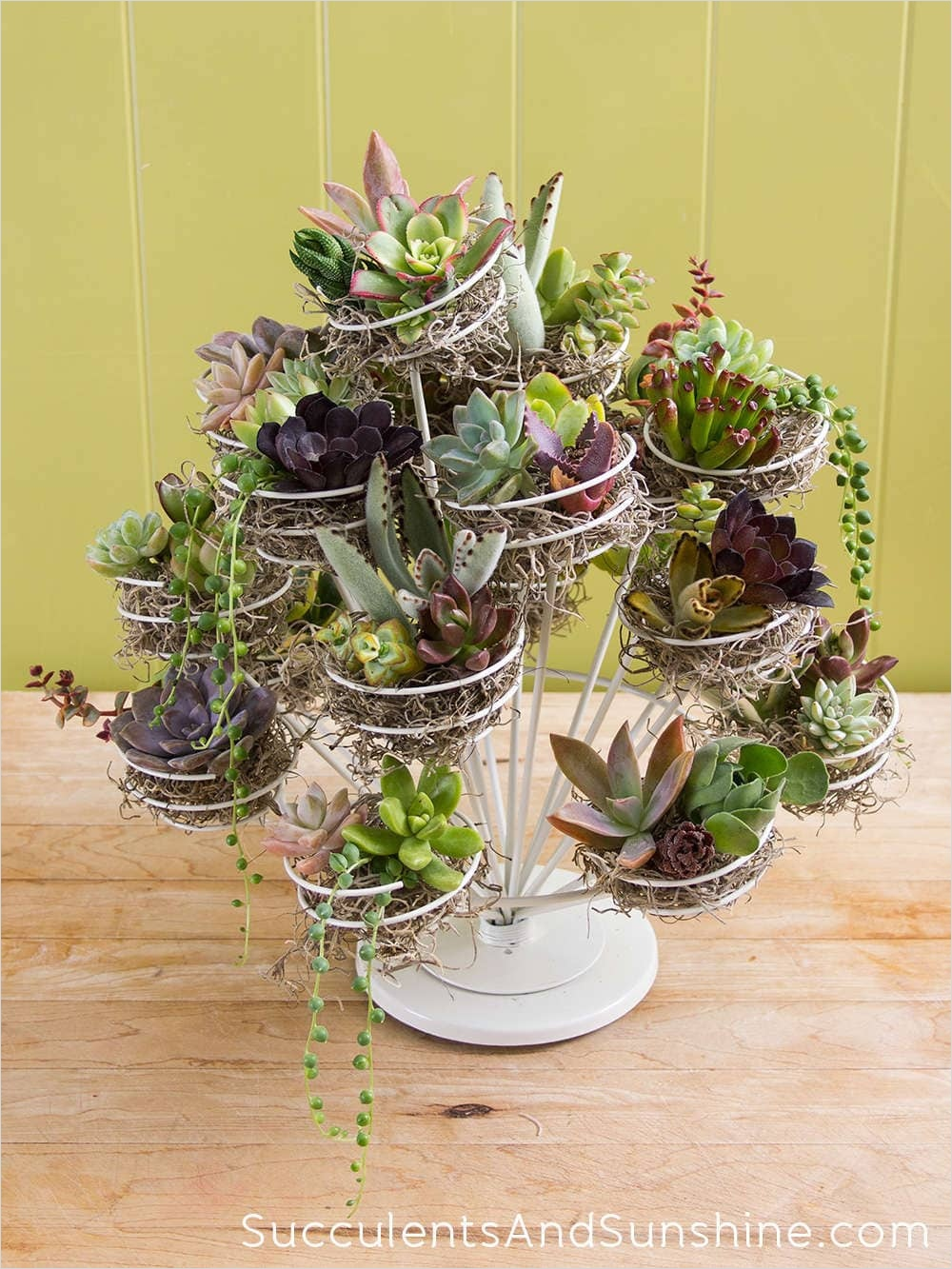 43 Beautiful Cactus Centerpiece Ideas 86 Learn How to Make A Succulent Stand Using A Cupcake Display 7