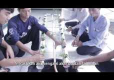 Tutorial Membuat Hidroponik NFT (NUTRIENT FILM TECHNIQUE)