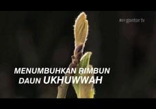 Kekuatan Wakaf | Teaser Video – GISWAF – ICAST UNIDA Gontor