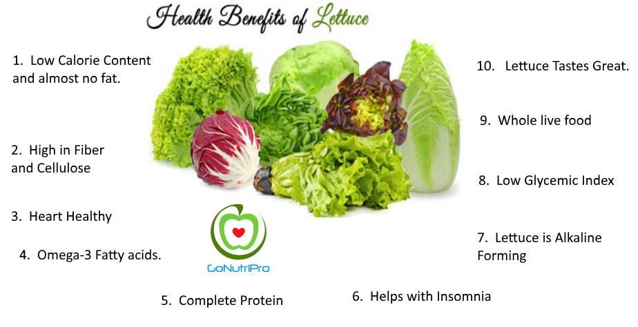 Health Benefits of Lettuce
