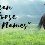 Indian Horse Names
