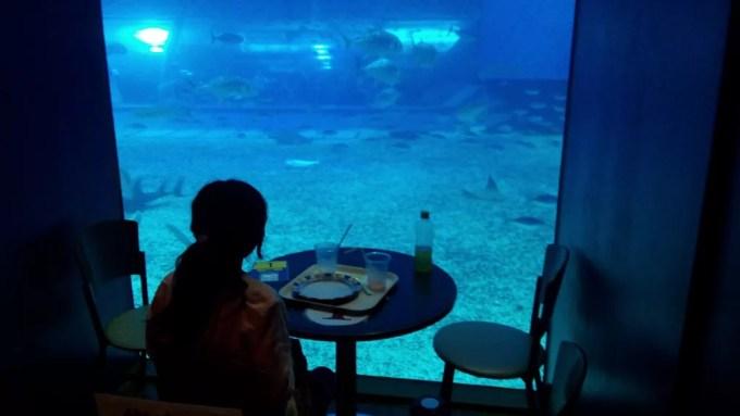 オーシャンブルーの水槽側の席
