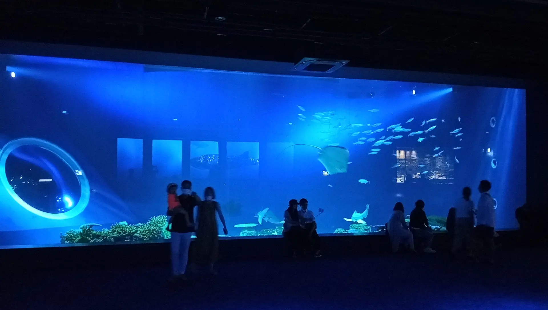 Large tank on the first floor of the DMM Kariyushi Aquarium
