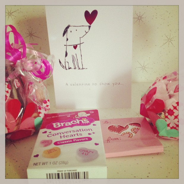 Valentine's Day Package from Heidi at YA Bibliophile | Good Books And Good Wine
