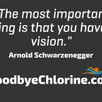 Arnold Schwarzenegger, vision success