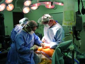 lever-transplantatie-operatie