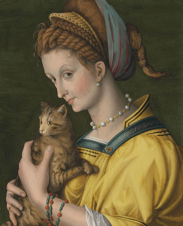 Portrait of a young lady holding a cat by Francesco Bacchiacca