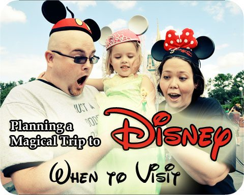 Disney Tips Park When