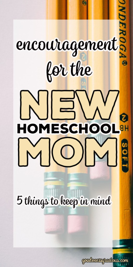5 Encouraging Thoughts to Keep in Mind for the New Homeschool Mom.