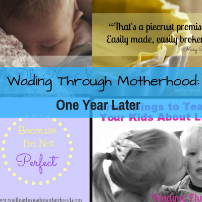 A Tribute to Wading Through Motherhood