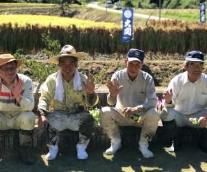 Yamadanishiki farmers in Hyogo, Japan.