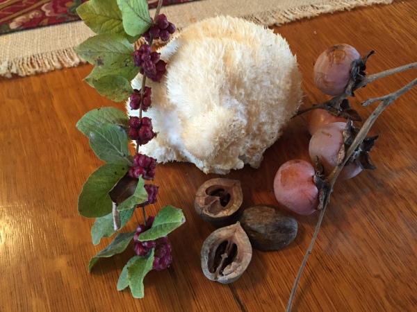 Lion's Mane mushroom and persimmons