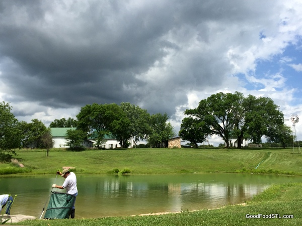 Farm pond cleaning