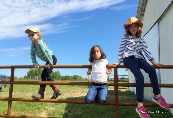 kids climbing fence