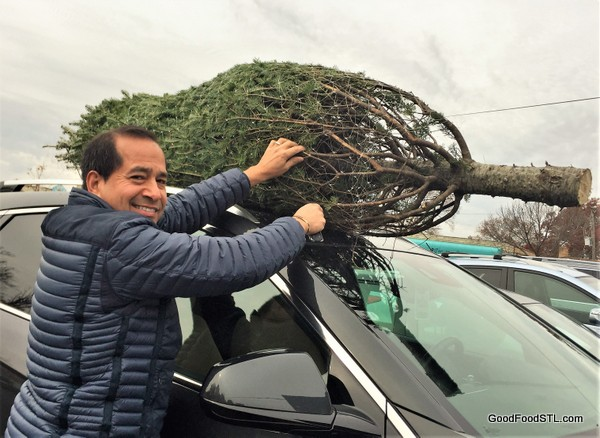 Juan Carlos Christmas tree