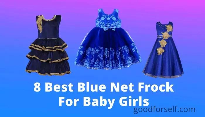 8 Best Blue Net Frock For Baby Girl