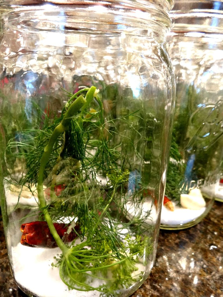 Jars filled with dill, salt, pepper and garlic