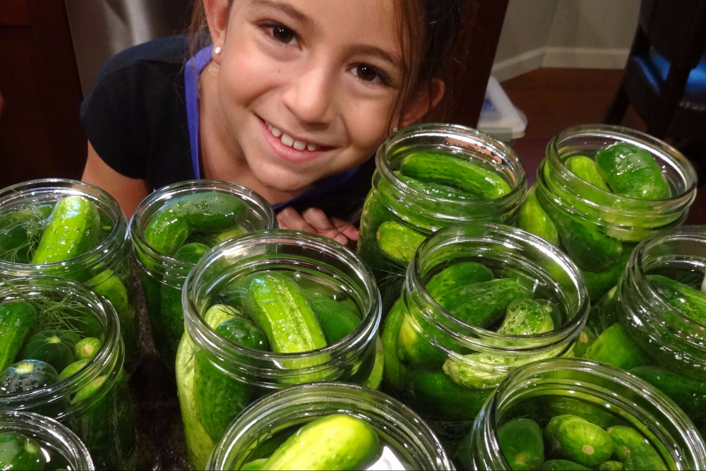 Make Your Own Dill Pickles at Home with Bubu's Dill Pickle Recipe