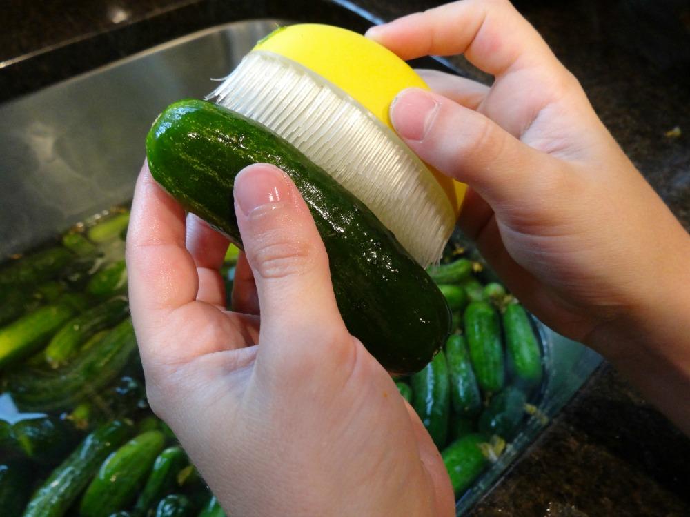 Scrubbing pickles
