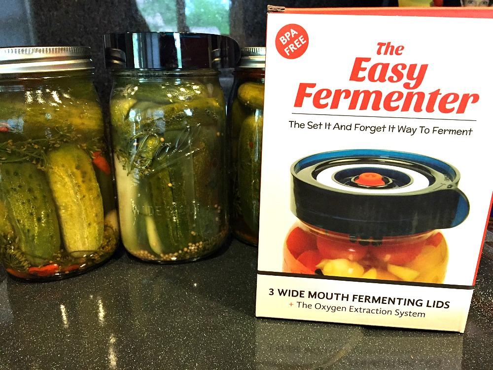 The Easy Fermenter 1