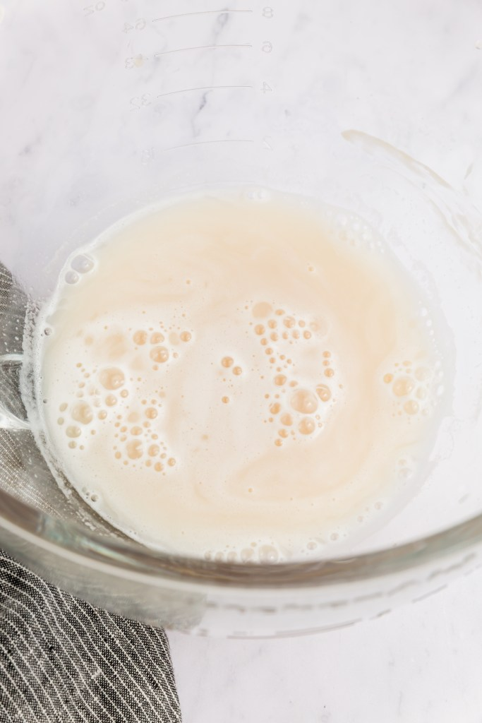 Picture of yeast bubbly mixture