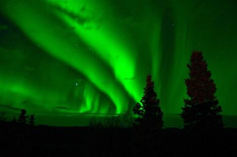 Aurora Borealis in the sky in Yukon Territory, Canada. Photo by WildOne