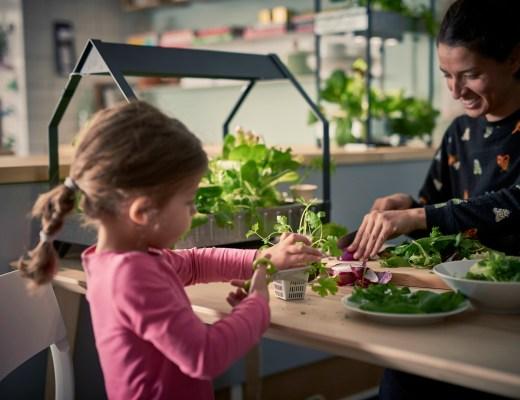 IKEA hydrocultuur kweeksets-Goodgirlscompany-zelf groentes kweken-moestuintjes