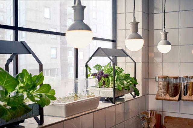 IKEA hydrocultuur kweeksets-moestuintjes van ikea-goodgirlscompany-