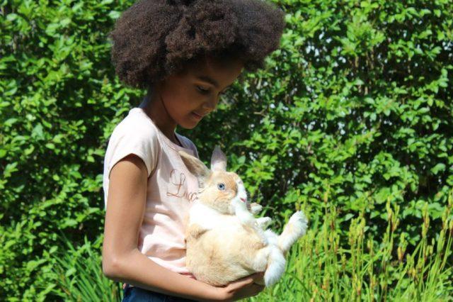 hip-hop-ons-konijn_huisdier-dood