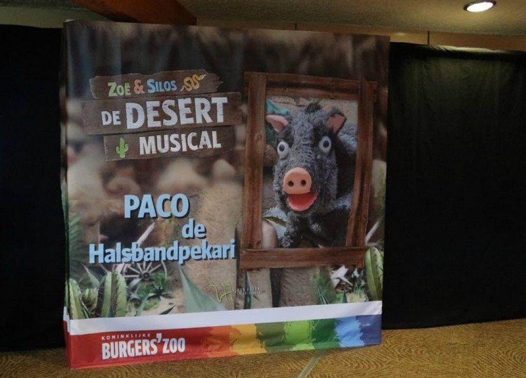 Paco de Halsbandpekari