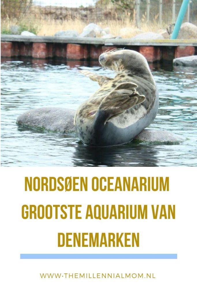 Nordsøen Oceanarium