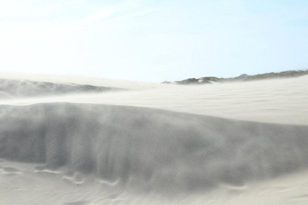 Råbjerg Mile wandelende zandduin