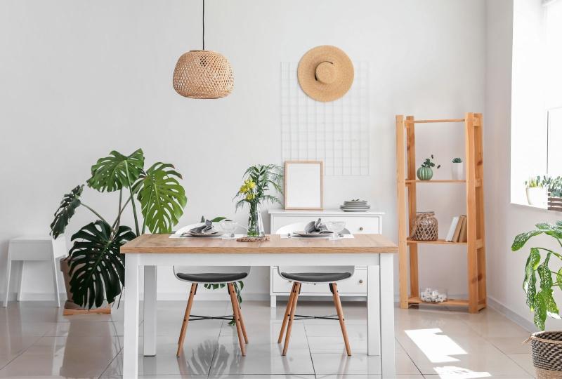 planten sfeer in huis