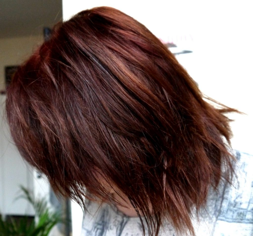 Lush Henna Natural Dye In Caca Marron Before After Good Golly Miss Hollie