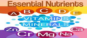 50 – Healthy Diet Essentials