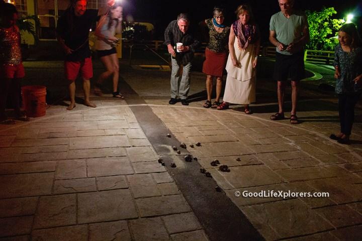 Crab Race Night at Turquoise Bay Resort Roatan Honduras