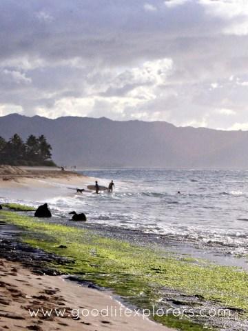 blog, beach, hawaii, oahu, North Shore, travel tips, information, travel, travelblog, surfing