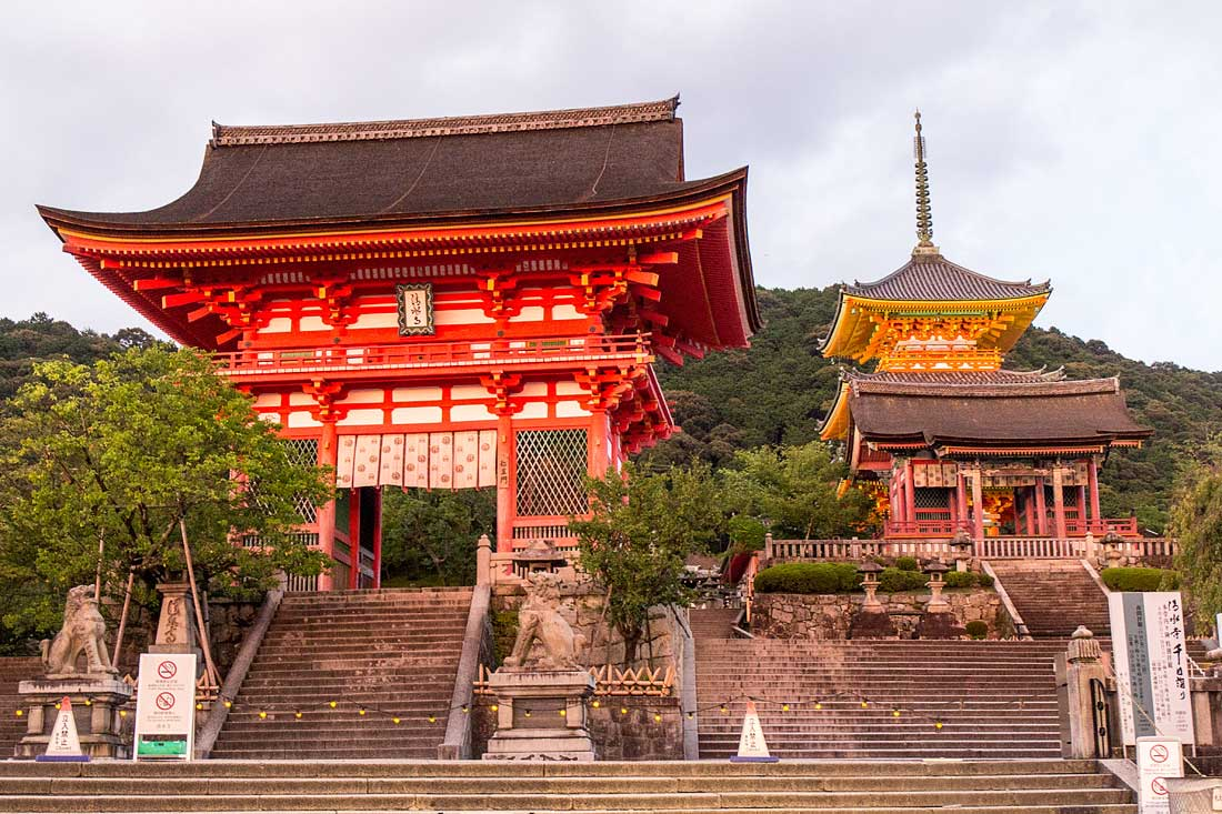 Kyoto, Travel, Japan, Gion, Camellia, Cooking, show, culture, temple,4 experiences you must have in Kyoto