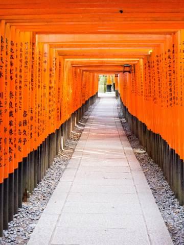 Japan; kyoto; Arashiyama; Kinkaku-ji; Fushimi- Inari; Temple; tourism; attraction; travel, tori, red gates