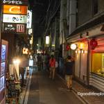 Pontocho, dining, Japan, Kyoto, Food, restaurant, geisha, nightlife, kamo river, travel tips, travel, solo travel, foodie