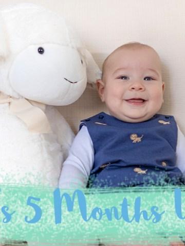 5 months update, parenting, motherhood, baby, goodlifexplorers, blog, tips, feeding, sleeping, development, growth, mom life,