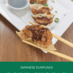 Pork gyoza recipe with simple dipping sauce